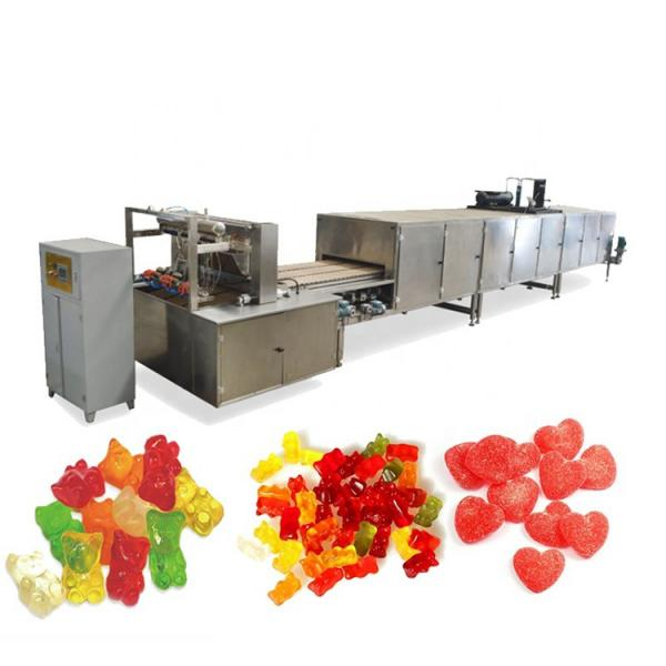Jelly Candy Making Machine/Small Gummy Bear Candy Production Line With Factory Price